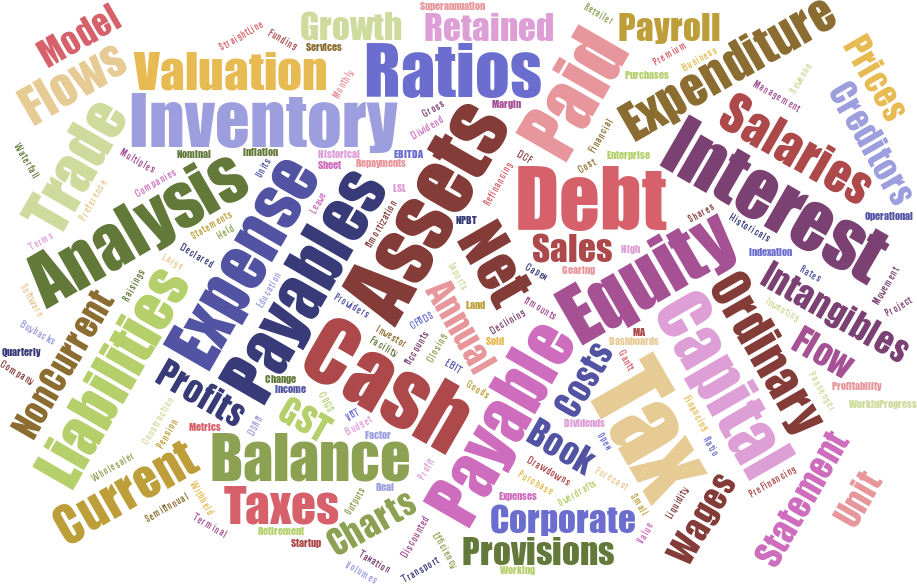 Word cloud showing: model, cash, assets, analysis, expenditure, payable, valuation, inventory, ratios, growth